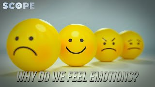 Why Do We Feel Emotions?   SCOPE TV