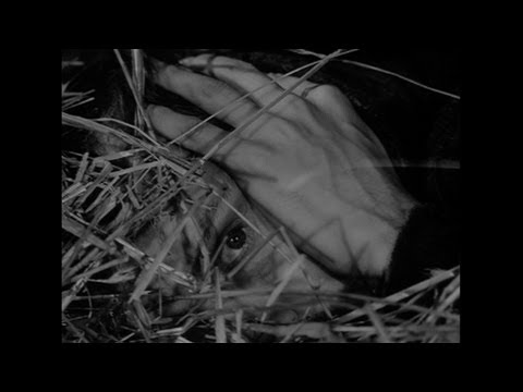 The Ascent - Hiding from the Nazis