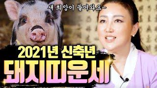 2021년 돼지띠운세 미리보자 새 희망이 들어온다? [ 기해생 정해생 을해생 계해생 신해생 ]