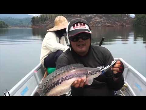 Fishing Buddies Malaysia - Air Ganda, Gerik, Perak Malaysia