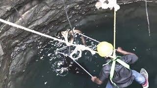 Snake Catcher Risks Life to Save Cobra Stuck Down Well