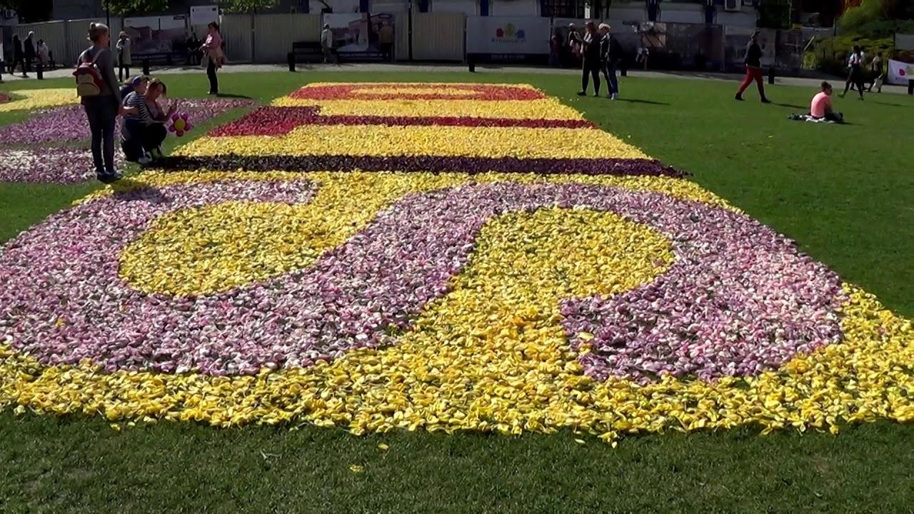 X Bydgoskie Dywany Kwiatowe 60 Lat Sito