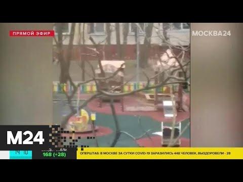 В Гольянове родители гуляли с детьми на площадке - Москва 24