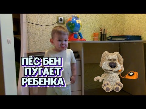 УЖАС! Говорящий пёс Бен пугает ребенка..