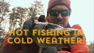 Non Stop Winter Fishing Action