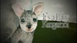 엄마가 읽어주는 영어동화 - It's a Baby Kangaroo!