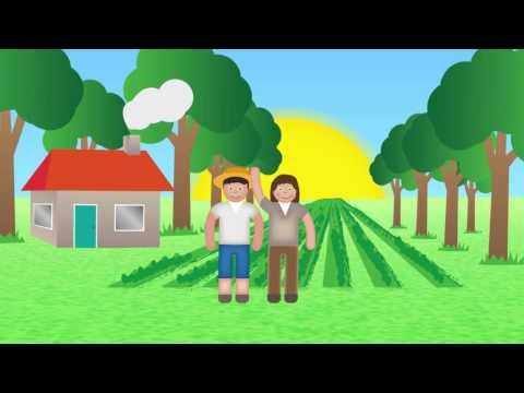 Animated film The Dutch Animal Feed Manufacturers (Nevedi)
