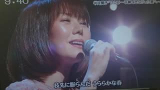 話題のソング半崎美子さんのサクラ~卒業できなかった… 半崎美子 検索動画 11