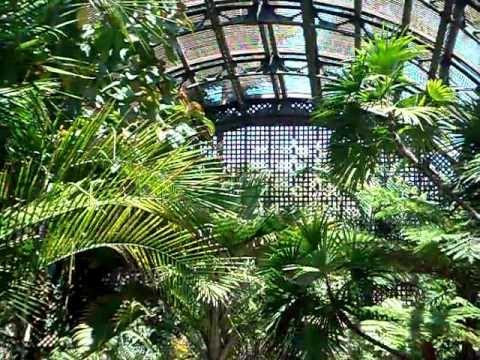 Balboa Park Botanical Gardens, San Diego, CA.: Part II