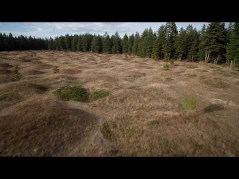 Mima Mounds