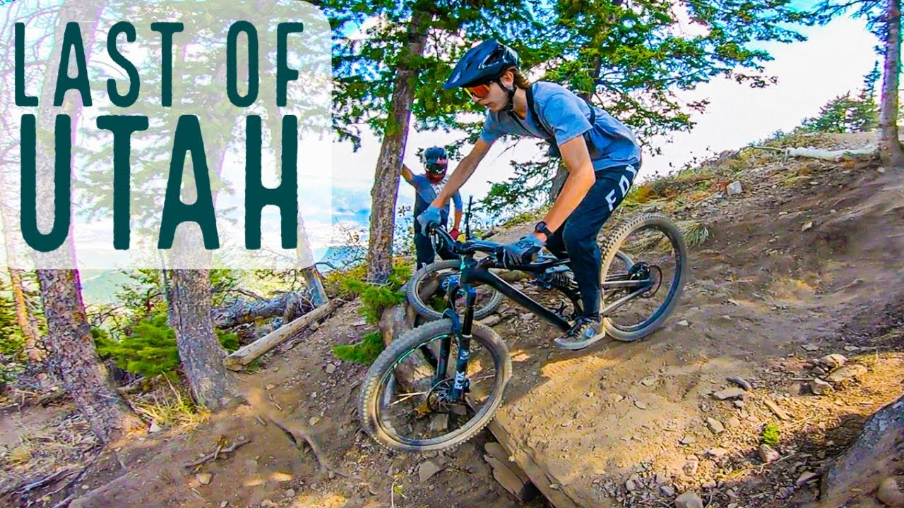 I Barely Survived This Trail at Deer Valley MTB Park