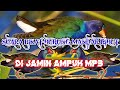 Suara Pikat Burung Mandar Paling Ampuh  Mp3 - Mp4 Download