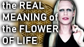 the real meaning of the flower of life what is sacred geometry?