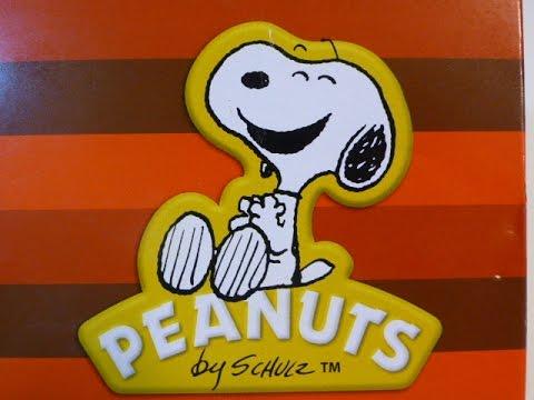 Snoopy NASA Astronaut