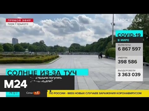 Много ли москвичей вышли погулять в первый теплый день недели - Москва 24