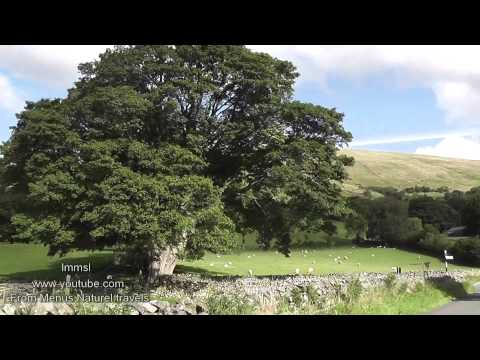 Yorkshire - Dent Village, Dales &  Beautiful British Countryside -Relax With Nature