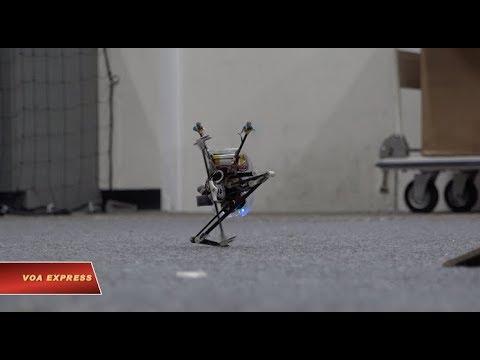 Robot chuyển động linh hoạt như động vật (VOA)
