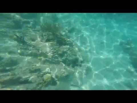 Snorkeling in the U.S. Virgin Islands