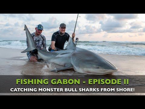 FISHING GABON - EPISODE II - MONSTER BULLSHARKS FROM SHORE!