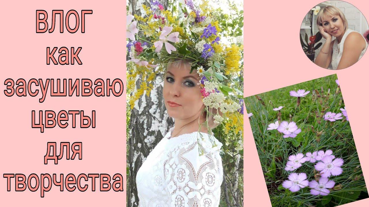ВЛОГ | как засушить цветы | сухоцветы для декора