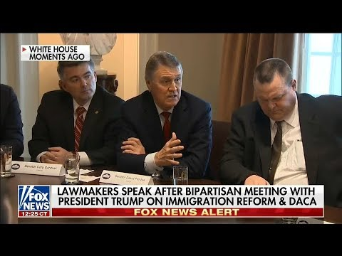 Senator David Perdue In White House Immigration Meeting (Part 2)