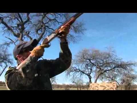 Uruguay Bird Hunting With Los Gauchos Outfitters
