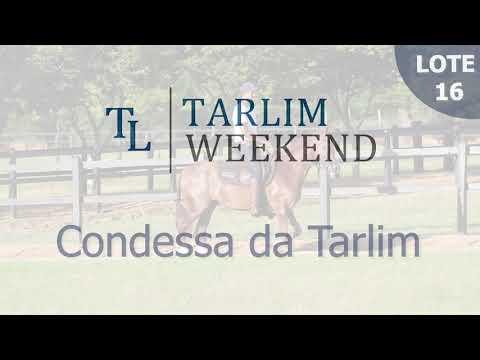 Lote 16 - Condessa da Tarlim (6º Leilão Tarlim)
