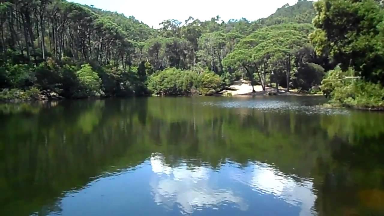 A lagoa azul - 5 2