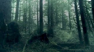 DAWN OF THE PLANET OF THE APES Instagram Trailer