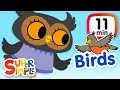 The Super Simple Show - Birds | Cartoons For Kids