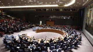 أخبار عربية - إجماع في مجلس الأمن على مشروع القرار الروسي التركي