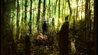 Medwyn Goodall / Runestone - Nine Maiden Chronicles (Druid II)