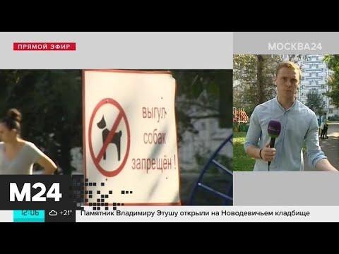 Смотреть фото Что о получившей ножевые ранения собаке говорят местные жители - Москва 24 новости россия москва