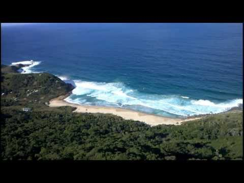 Royal National Park (bushwalking) Private Guided Day Tour