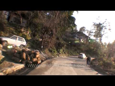 Driving from Chimi Lhakhang to Dochula Pass in Bhutan