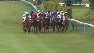Vidéo de la course PMU PRIX ROBERTET