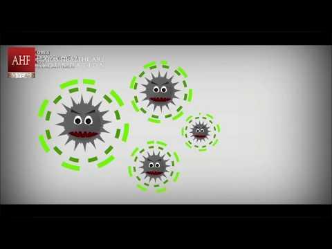 Info Dasar HIV/AIDS  Hoax tentang HIV/AIDS Tes HIV Dan Cara Penularan HIV