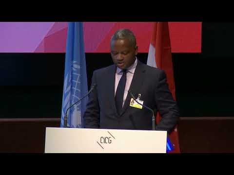 Mozambique: Official Statement At The Global Platform For Disaster Risk Reduction 2019