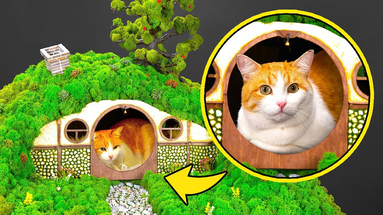 HOW TO MAKE THE COOLEST HOBBIT'S HOUSE FOR A CAT!