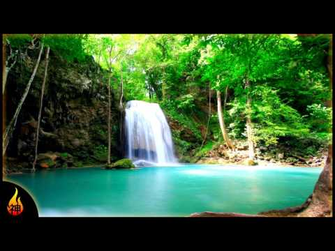 Beach Reggae Music | Tropical Oasis | Relaxing Island Music