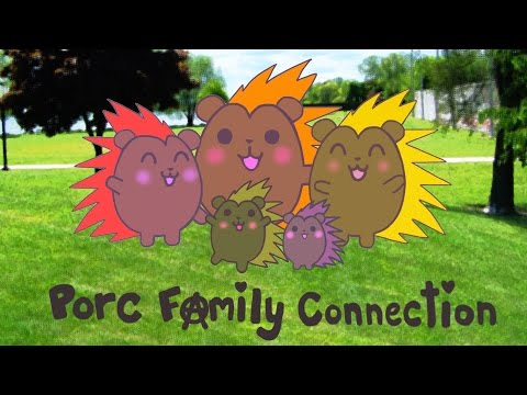 Porc Family Connection | New Hampshire