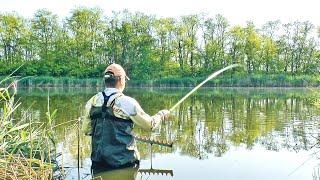 За карасем залез в воду Рыбалка на хитрого карася поплавочной удочкой Майский карась на поплавок