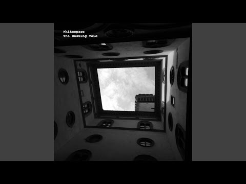 The Ensuing Void (Original Mix)