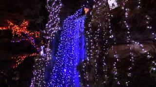 野口記念館の行縢の滝の電飾