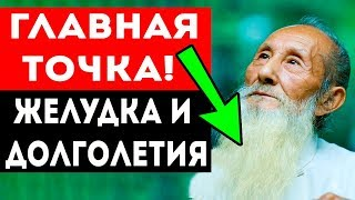 ВЫДАЮЩАЯСЯ ТОЧКА желудка и долголетия от КИТАЙСКИХ МУДРЕЦОВ