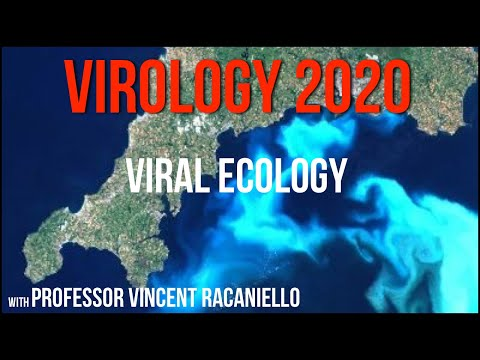 Virology Lectures 2020 #23: Viral ecology