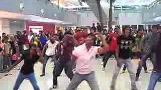 flash mob valentines day compressed