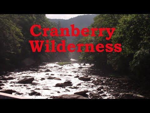 Cranberry Wilderness Trout via Mule Trip