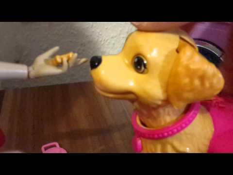 DAS UNVERSCHÄMTER HUND!Barbie film
