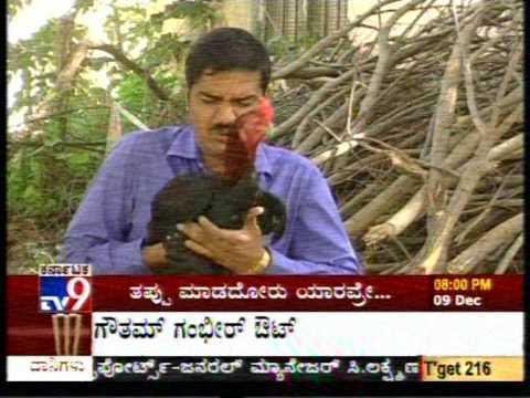 tv9 Kannada Blooper 2009